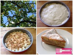 Apfel Amarettini Kuchen Sandras Kochblog