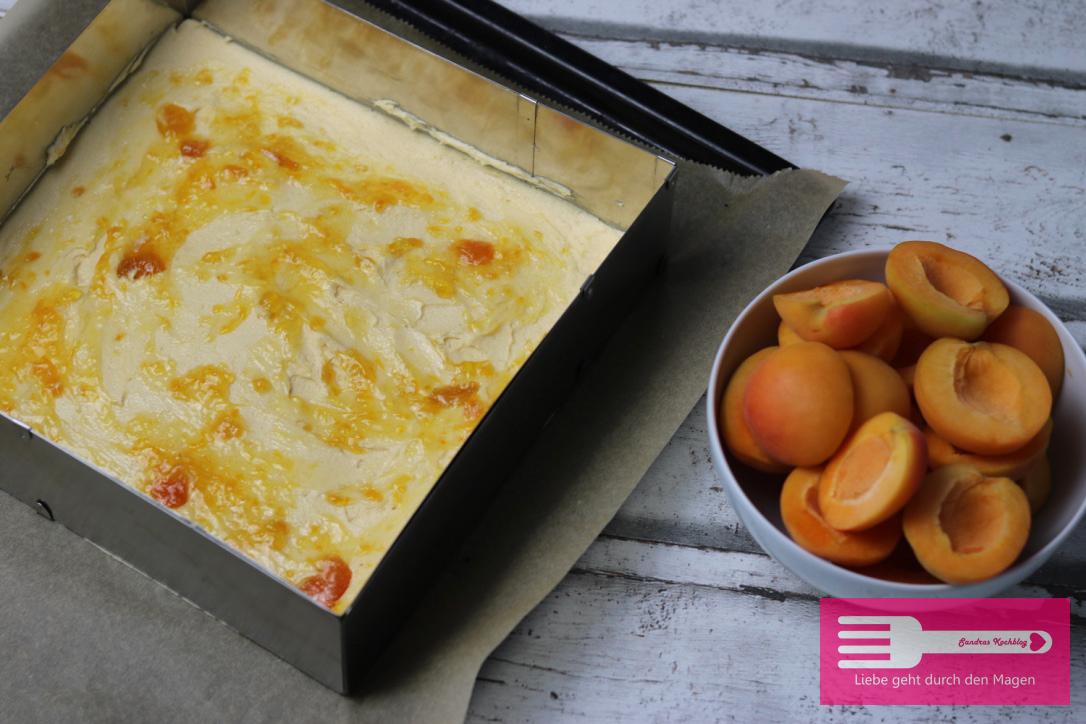 Aprikosenkuchen vom Blech1