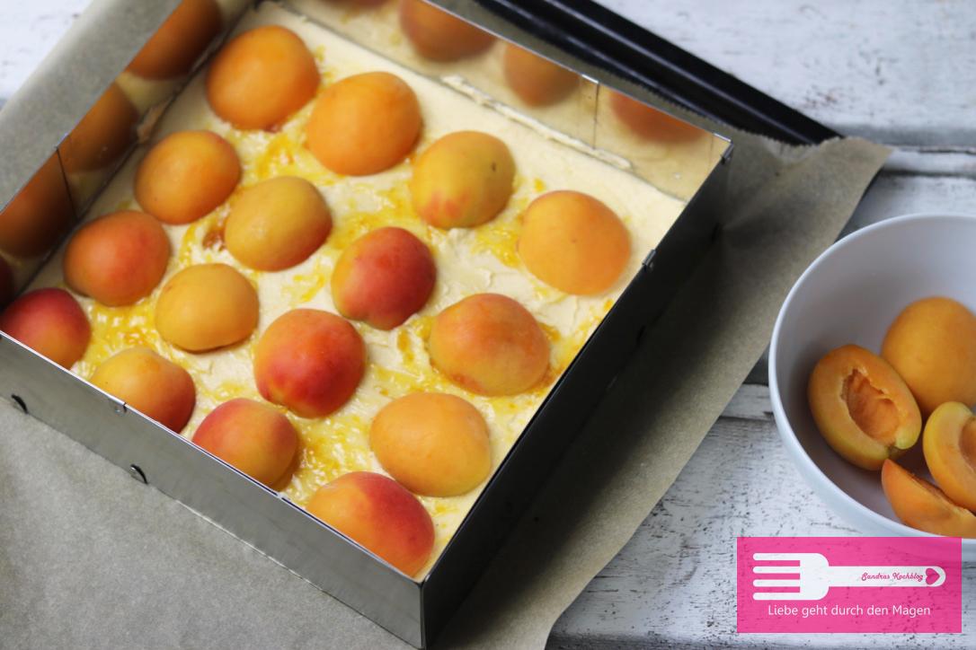 Aprikosenkuchen vom Blech2
